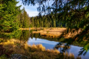 15.11.2020 Arbersee, 15.11.2020 Kleiner Arbersee - © Daniel Anetzberger / Woidlife Photography